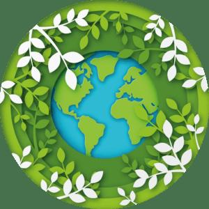 ökologische Fahrzeugreinigung mit Dampf - Dampfreinigung